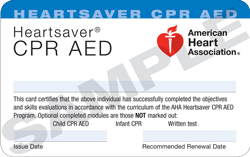 How To Get a Replacement CPR Card (For Lost CPR Card)