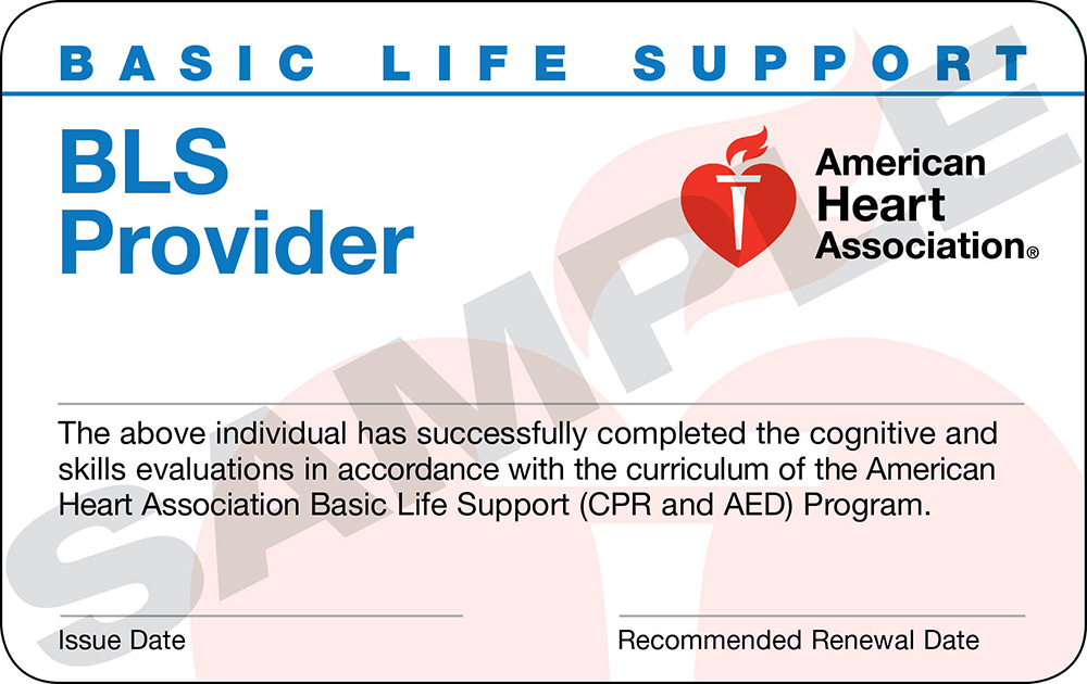 1 AHA BLS for Healthcare Providers, Local BLS Classes [Register Online]